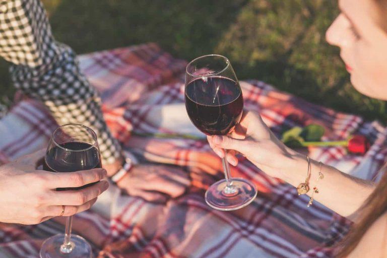 Leute trinken Wein beim Picknick